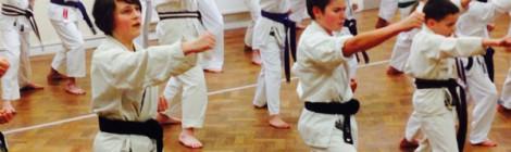 Karate academy offers free class