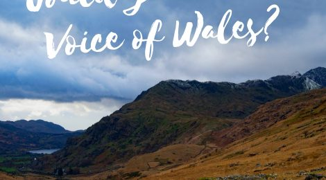 Do you have 'the voice of Wales'?