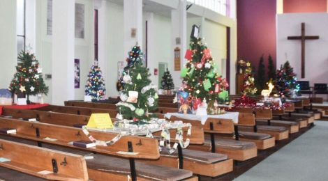 Christmas tree festival in pictures